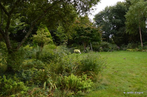 asters,bouquets,jardin de Lilianne 043.JPG