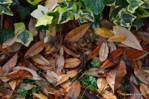 Romefort,bord de Creuse,vent,feuilles,jardin,canal 175.JPG