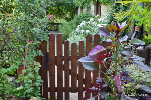 confiture,bouquet,petit jardin 057.JPG