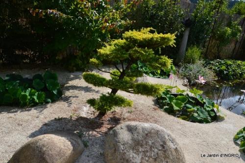 les jardins d'eau de Carsac 170.JPG