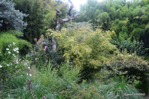 bouquet d ete,Plambouissin,grotte ,Erignac,Campagne,Julie 176.JPG