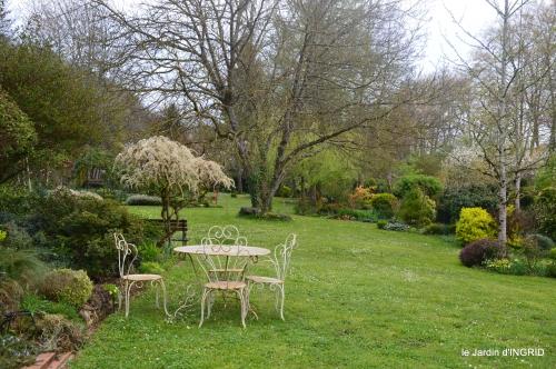 première roses,achats,jardin blanc 014.JPG