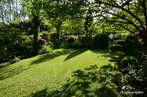 jardin soir et matin 028.JPG