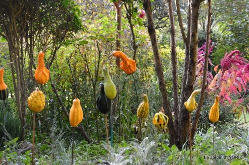 automne, décos cucurbitacées,jardin 022.JPG