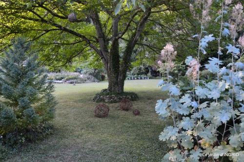 jardin été,hydrangeas,journaliste 144.JPG
