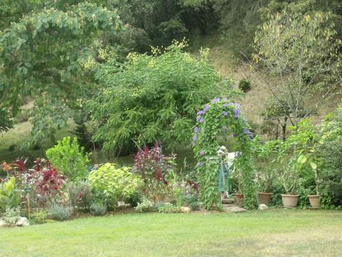 jardin,Arya,voiture,kois,nicky 055.JPG