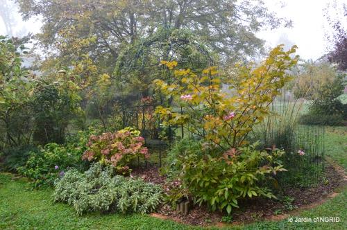brouillard le matin d'automne 049.JPG