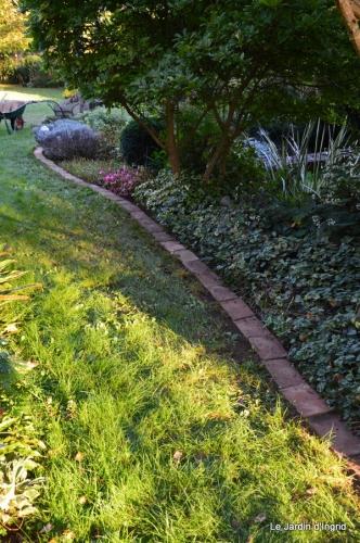 automne jardin,la rue,abeilles,les p filles 018.JPG