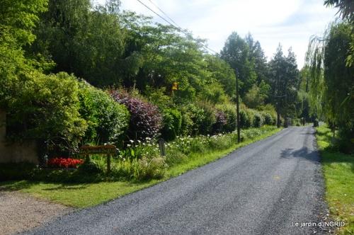 hémérocalles,Doprdogne,canal,bouquet fruit,jardin 068.JPG