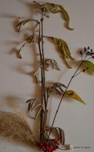 matin d'hiver,tableaux de fleurs janvier 061.JPG
