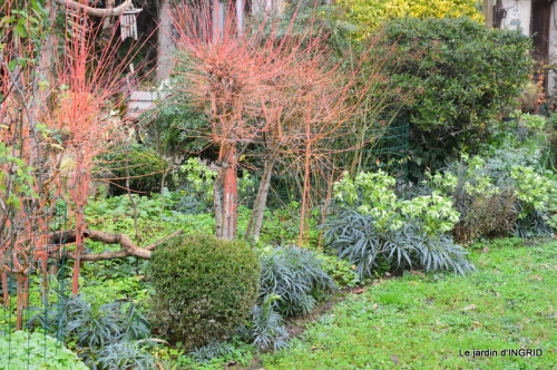 jardin d'hiver 019.JPG
