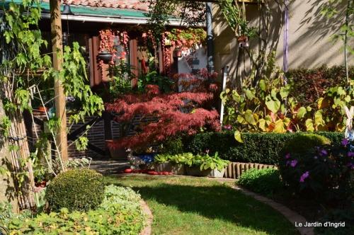 jardin automne,Arya avec Nicky 083-001.JPG