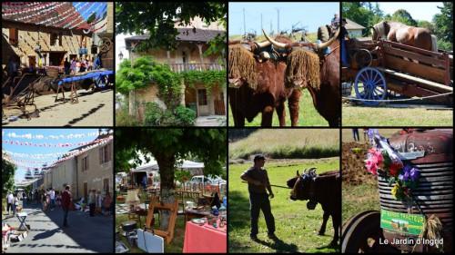 2013-08-12 jardin,traditions rurales,les filles,Romane,citouilles,coeurs1.jpg