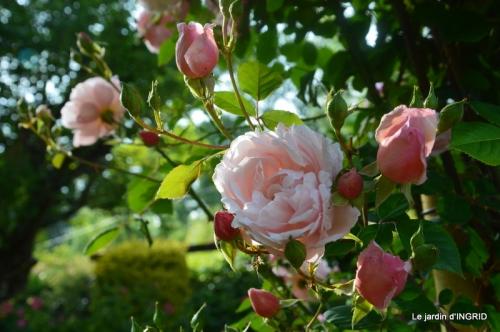Trémolat,petit jardin,Julie 095.JPG