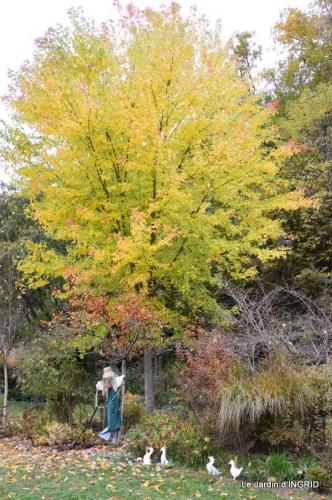 les arbres en automne,cabane 042.JPG