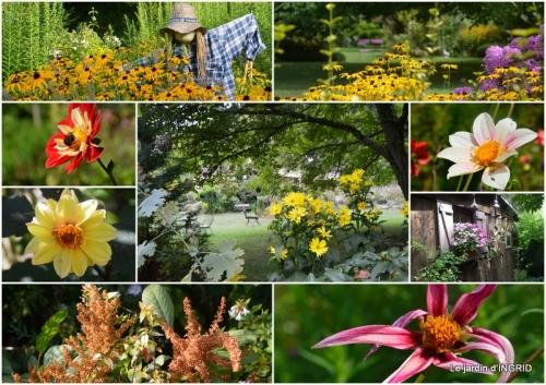 2018-08-31 lantanas,jardin aout,2.jpg