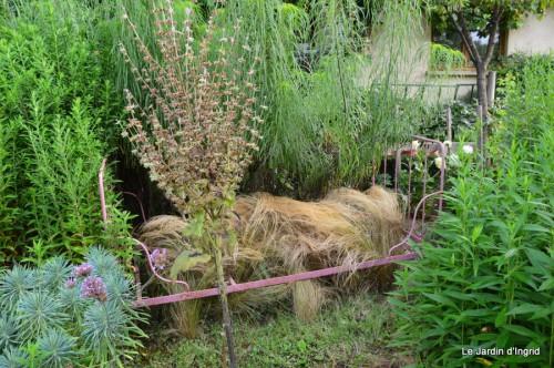 tournesols,pt jardin,nénuphard,libellules,lavande bouquet,carava 041.JPG