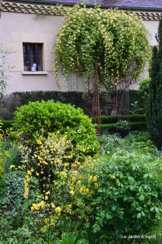 mésanges,escargots,ros. de banks,abeilles,Monpazier,Banes,Forêt 060.JPG