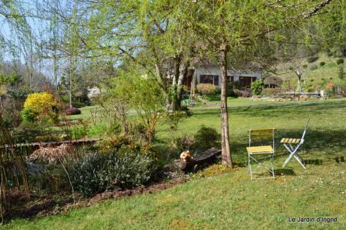 araignée,vues jardin,cygnes,insecte 051.JPG