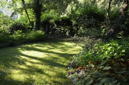 potager ,roses,jardin 019.JPG