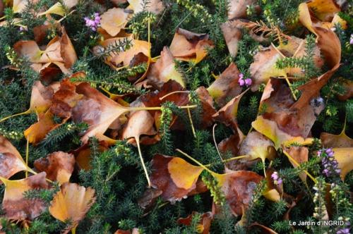 Romefort,bord de Creuse,vent,feuilles,jardin,canal 174.JPG