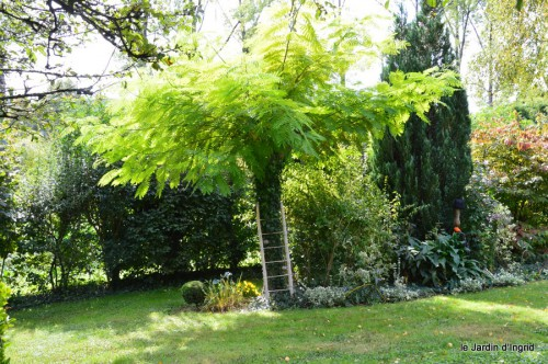 jardin automne,mariage Estor,barrage Bergerac 005.JPG