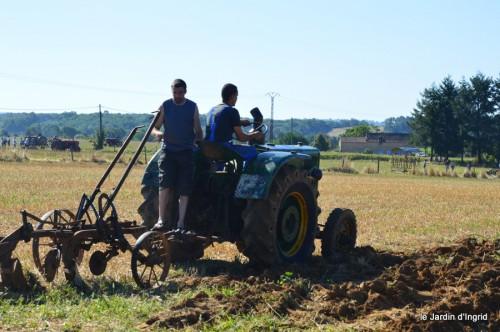 jardin,traditions rurales,les filles,Romane,citouilles,coeurs 033.JPG