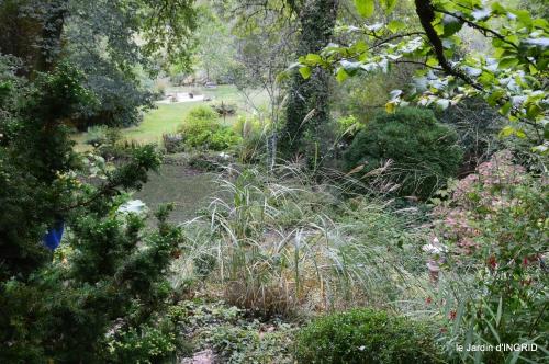 canal,au fond de l'Or,Julie,feuilles 081.JPG