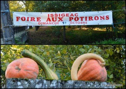 2020-10-18 Issigeac,citrouilles ,rhus,automne,jardin2.jpg