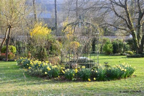 primevères ,jardin 024.JPG