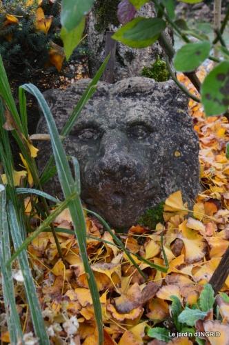 composition,kakis,jardin givré,asclépias,lalinde 082.JPG