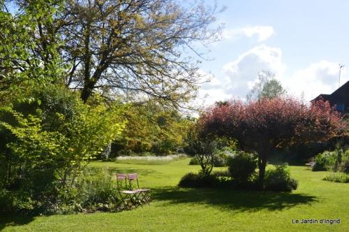 jardin avril et mai, 122.JPG