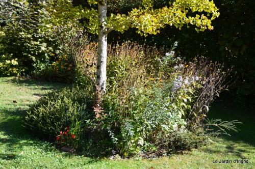 jardin début d'automne ,Sophie,rouge 072.JPG
