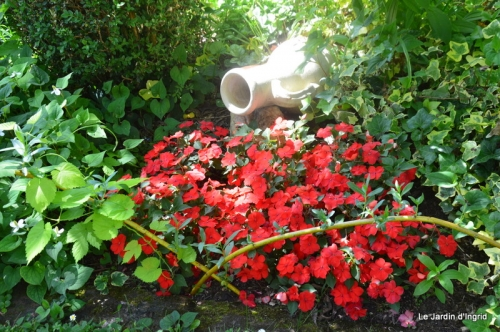 en juin jardin 028.JPG