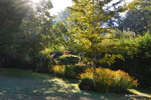 Belves puces,jardin,cygnes,bouquet blanc,arrosage 067.JPG