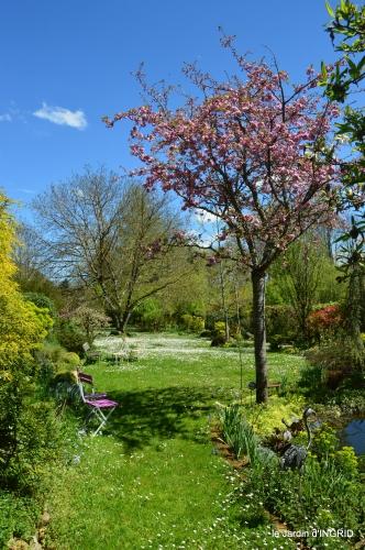 jardin printemps 043.JPG