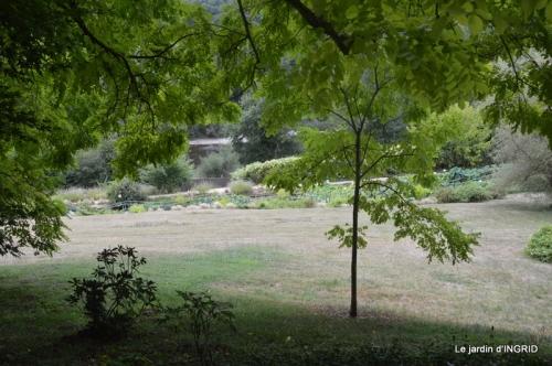 orage,puces,bouquet,Anniv.Ines,Brantome,Jardins d'eau 254.JPG