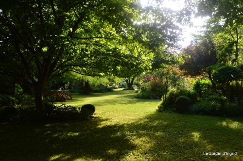 en juin jardin 156.JPG