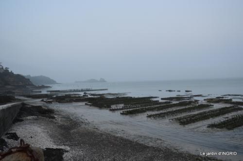 Cancale,plages du D,Joseph,Mesnil Gaillard,Miromesnil 055.JPG