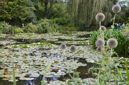 bouquet,jardin de Monet,les vaches,Pourville sur mer 104.JPG