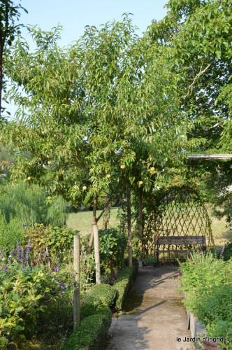 jardin,fruits,Caro,papillons,manthe religieuse,Lalinde 064-002.JPG