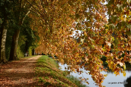 canal automne ,jardin,Ines 101.JPG