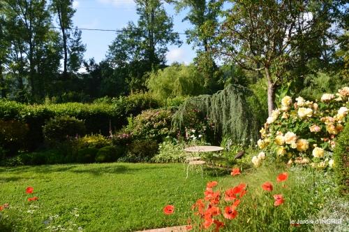 cygnes,Sophie,jardin en mai 042.JPG