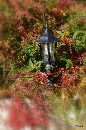 jardin automne ,travaux feuilles 036.JPG