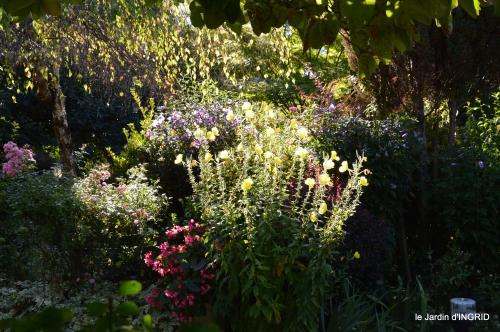 pigeons,jardin,anniversaire Ines,cygnes 031.JPG