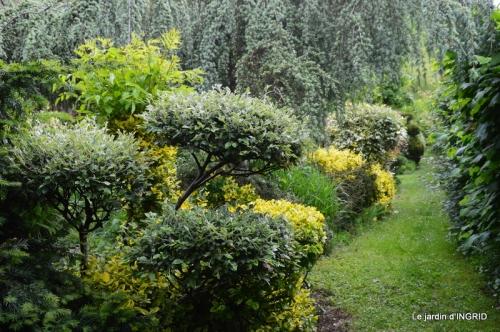 roses,jardin,Le Fleix,bleu 084.JPG