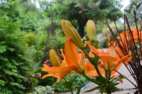 en juin jardin 092.JPG