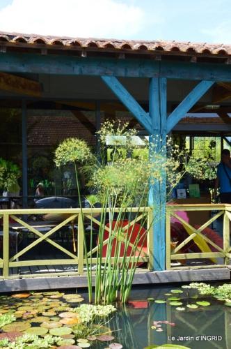les jardins d'eau de Carsac 155.JPG