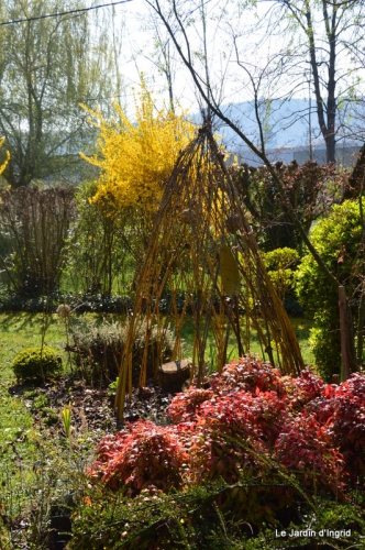 tonte,jardin,fleurettes 010.JPG