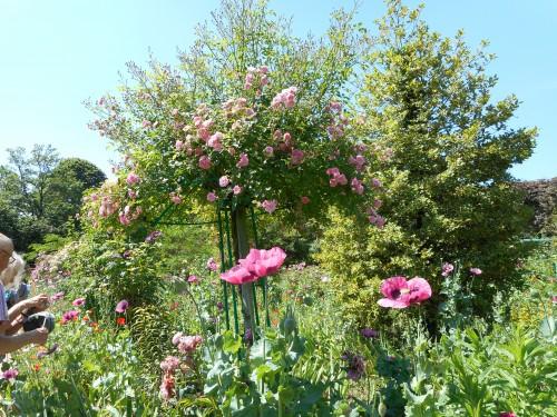 Normandie,jardin Monet,baie de Somme,chez Marylaur 185.JPG